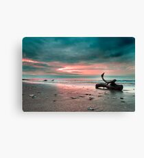Driftwood on the Beach sunrise Canvas Print