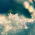 Eis Kristall  by Aviana