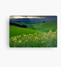 Catlins Farm Metal Print