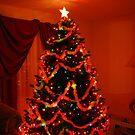 Merry Christmas! by Vonnie Murfin