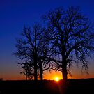Sunset Watching by michaelasamples