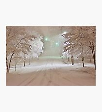 Winter Wonderland in Winston-Salem North Carolina 2-26-2015 Photographic Print
