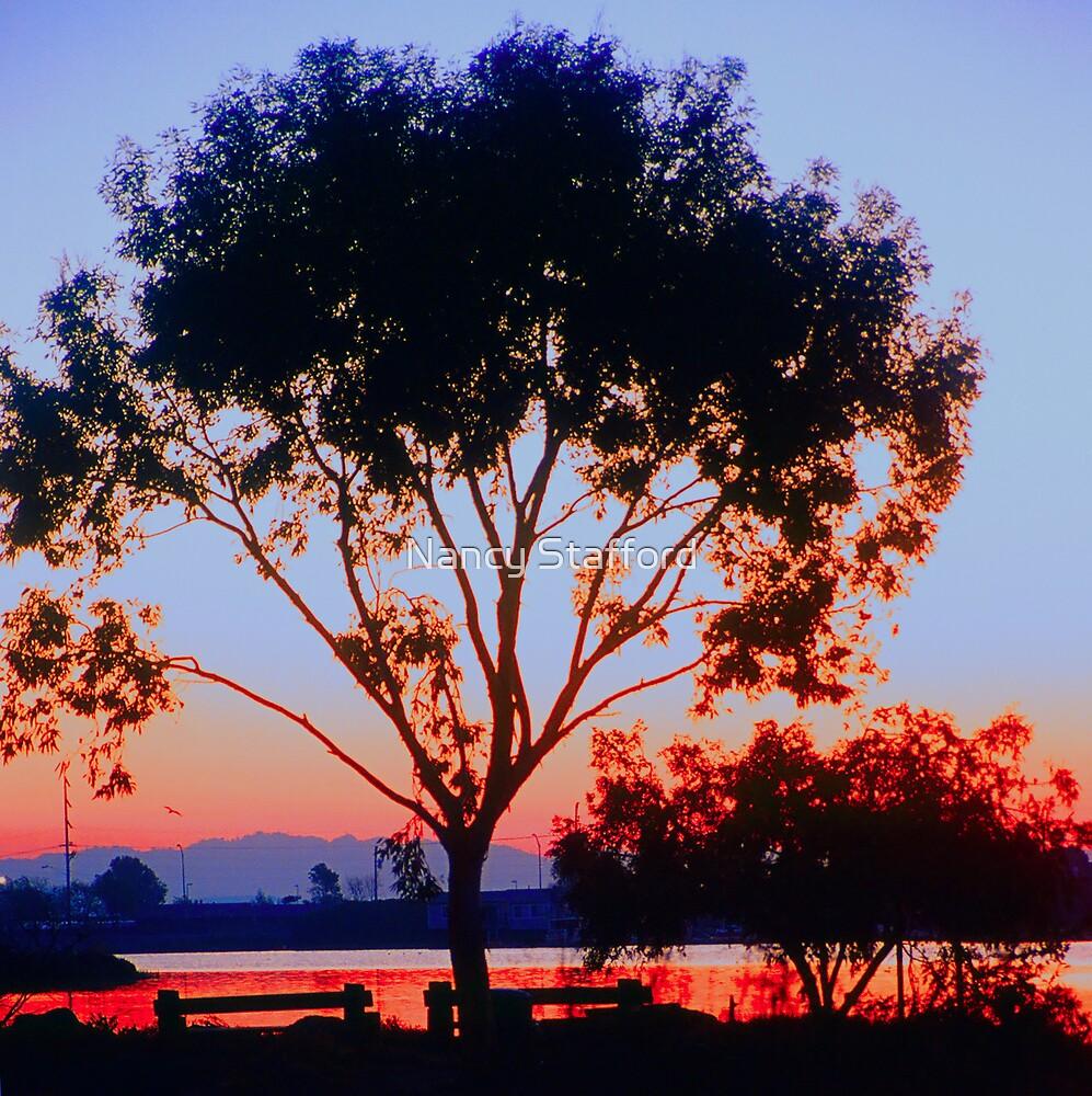 Sunrise by Nancy Stafford