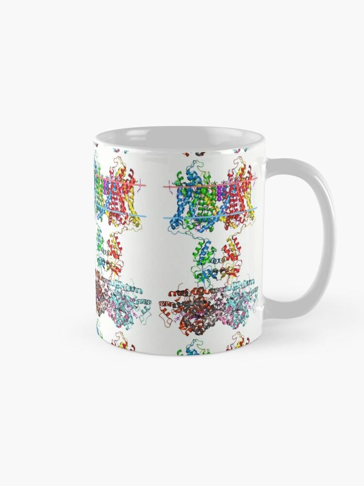Alternate view of Voltage-gated #Potassium #Channel #PotassiumChannel #Voltage #gated #VoltageGated #chemistry #biology #creativity #shape  #colorimage #imagination #structure #MolecularStructure #QuantumChemistry Mug