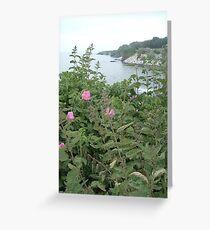Cliff Walk Greeting Card