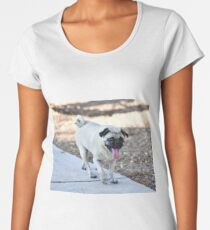 Ziggy On The Prowl Women's Premium T-Shirt