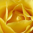 Butter by Jan  Wall