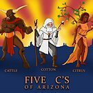The Five C's of Arizona by Dylan Newman