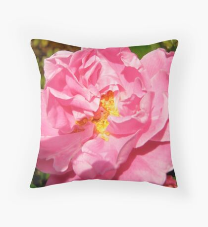 Governor General's rose 10 Throw Pillow