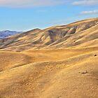 Expansive Desert Landscape by John Butler