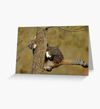 How Does This Work, Now? Greeting Card