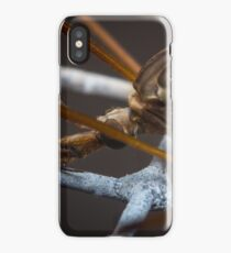 Crane Fly Macro iPhone Case/Skin