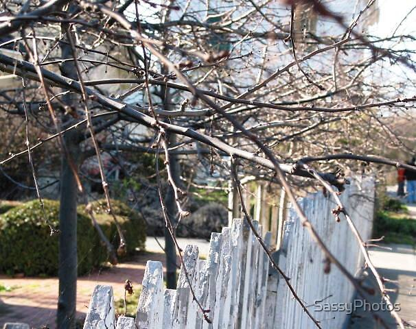fenced off by SassyPhotos