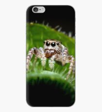 Jumping Spider Macro iPhone Case