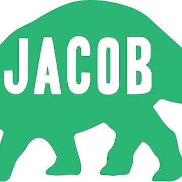 Jacob Dinosaur - Triceratops by chgcllc