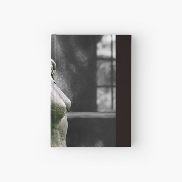 Incomplete Woman Hardcover Journal