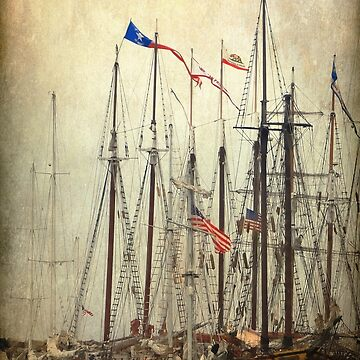 Tall Ships by CarolM