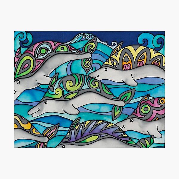 Hippie Dolphins Photographic Print