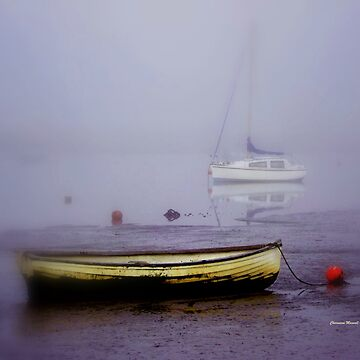 Mist coming into Topsham by Sita