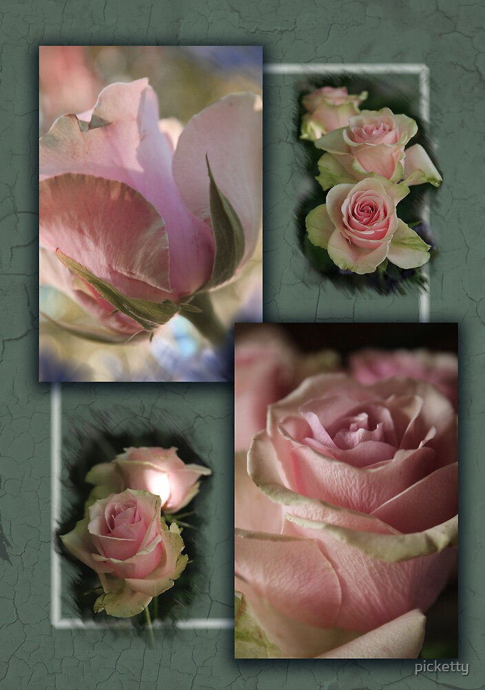 rose decor by picketty