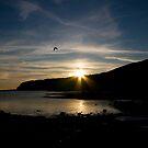 Kimmeridge Bay 1 by bubblebat