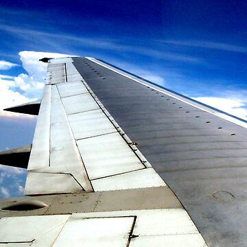 Flight by Orangemoth