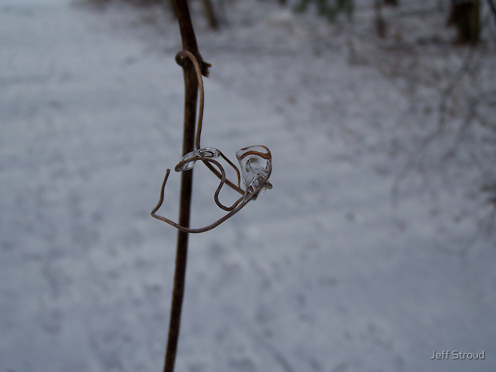 Ice jewell  by Jeff stroud