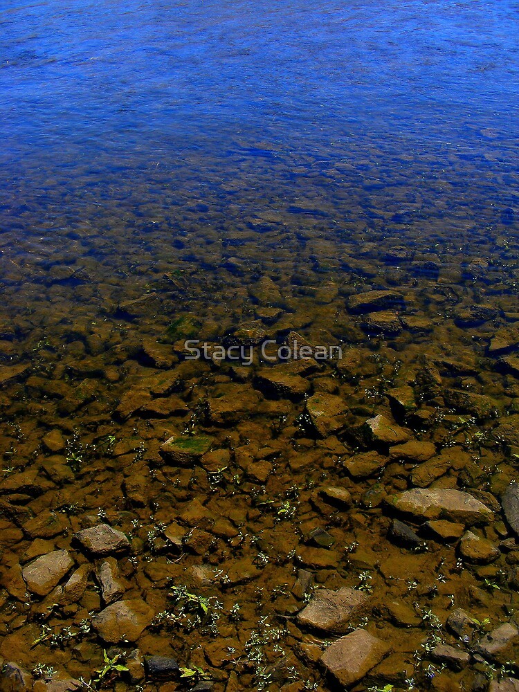 Rocks and Water by Stacy Colean