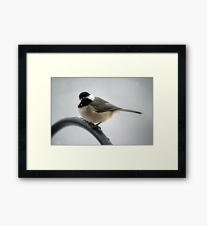 OK, what do you want? Framed Print