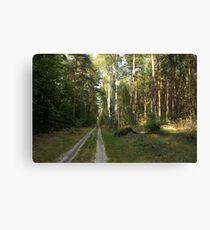Vanishing Point  Canvas Print