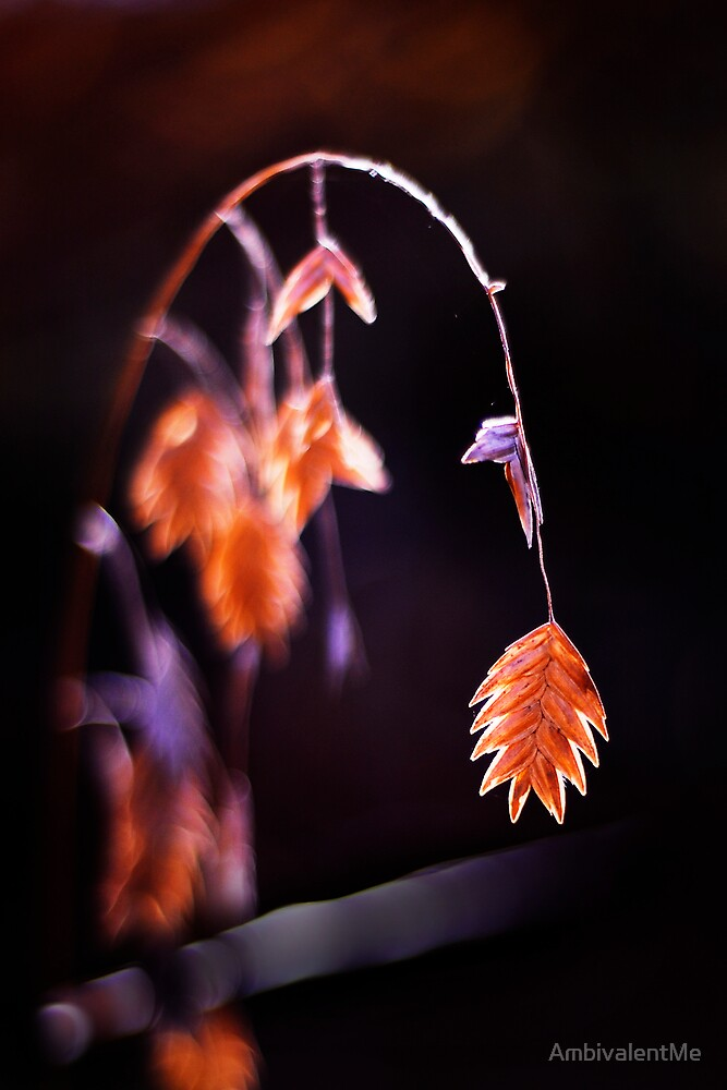 November by AmbivalentMe