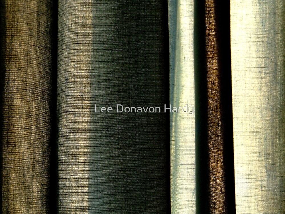 West Window by Lee Donavon Hardy