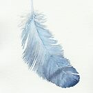 Blue feather study by LisaLeQuelenec