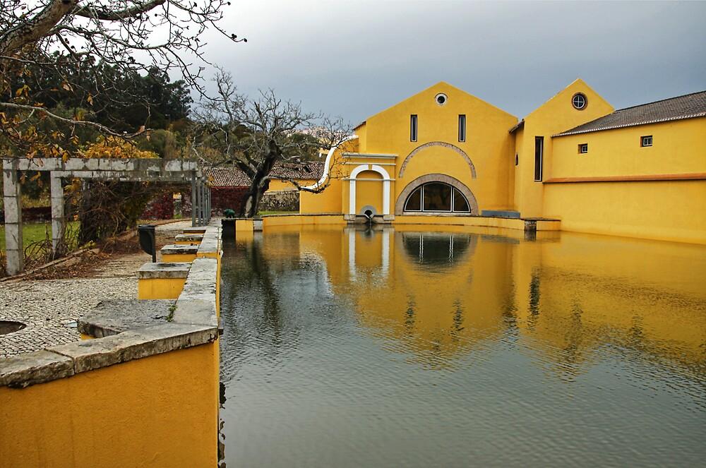 Still water by LMarinho