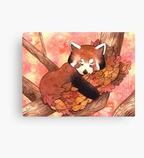 Cute Sleeping Red Panda Canvas Print