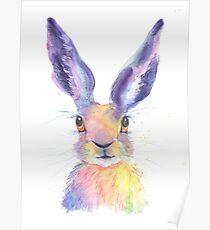 Rainbow Hare Poster
