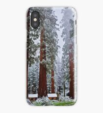 Sequoias in snowfall iPhone Case/Skin