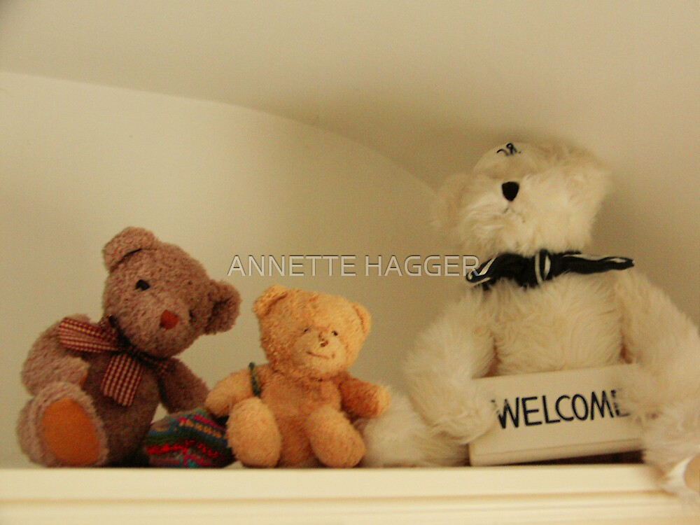 3 TEDS by ANNETTE HAGGER