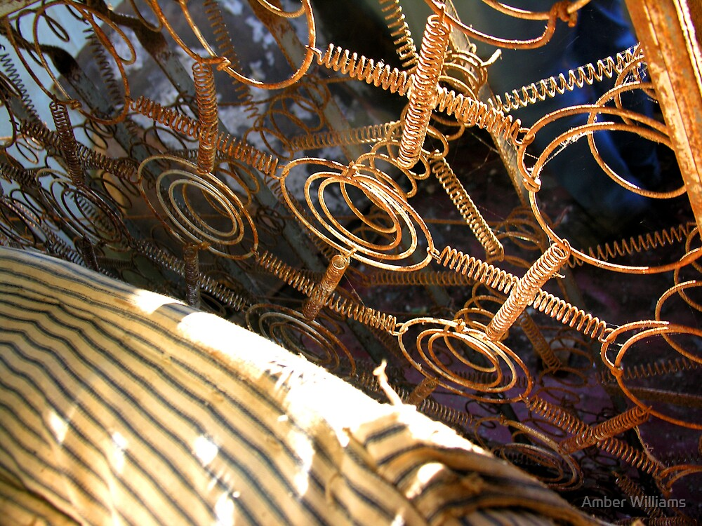 Mattress Springs by Amber Williams