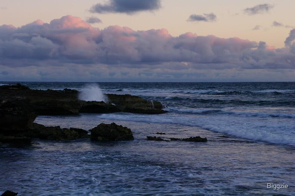 Cape Douglas Twilight by Biggzie