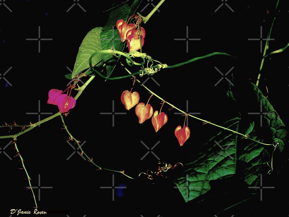 Flower Pods by DJanisRosen