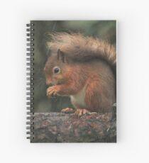 Squirrel shelter Spiral Notebook