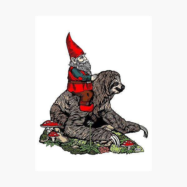 Gnome Riding a Sloth Photographic Print