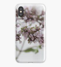 Oregano in Bloom iPhone Case/Skin