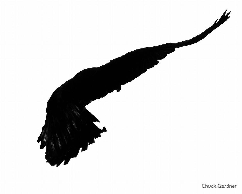 Eagle Dancer by Chuck Gardner