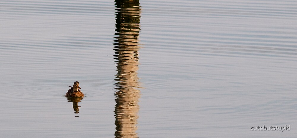 ripples of reflection by cutebutstupid