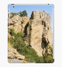 A high stone rock. iPad Case/Skin
