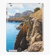 Sheer rocky coast. iPad Case/Skin