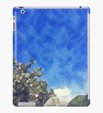 So Blue iPad Case/Skin