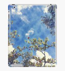 Beautiful Sky iPad Case/Skin